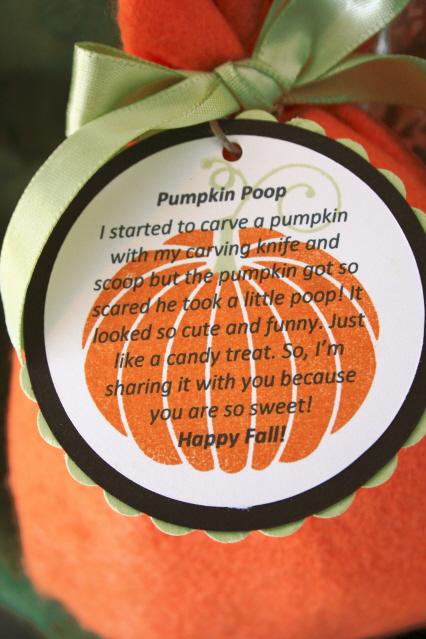 Pumpkinpoopcloseup